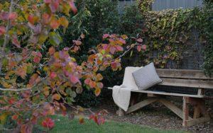 cosy garden seating at Studio 367